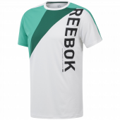 Camiseta Reebok Ost Blocked Tee Ec0993